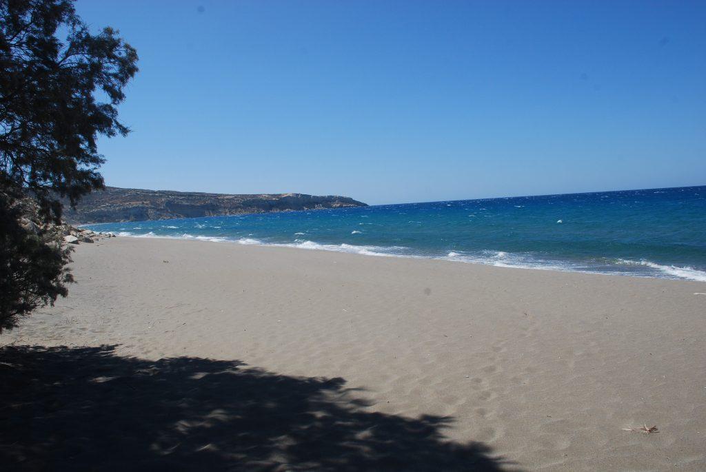Crete Kalamaki _aliejaus gimtine